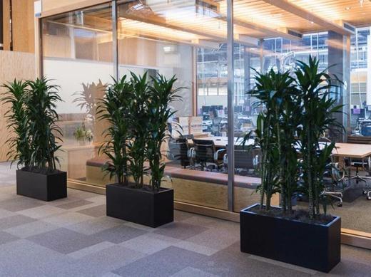 Phòng họp ngăn cách bởi cửa kính nhằm tạo không gian rộng rãi.
