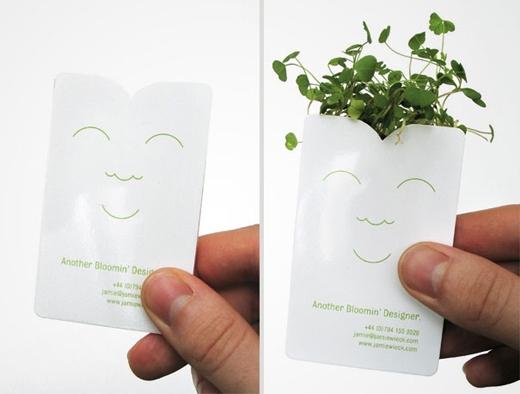 Bạn có thể trồng cây xanh vào tấm danh thiếp của cửa hàng bán hạt giống này.