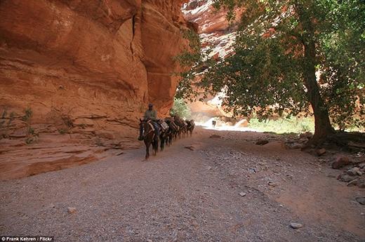 Cách con đường gần nhất khoảng 8 dặm, cửa ngõ đi vào ngôi làng của ngườiSupaichỉ thông qua một lối đi duy nhất. Đó là một con đường khá gồ ghề, nếu du khách không muốn đi bộ có thể cưỡi la để đi vào.