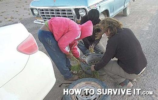 Nếu lốp xe của bạn bị bể và bạn không đem dư theo lốp xe để thay, hãy lấp đầy lốp xe bằng cỏ để có thể tiếp tục đi tiếp.