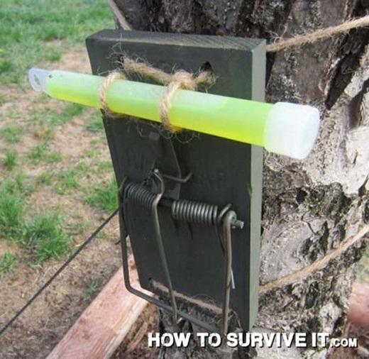 Thiết lập hệ thống an toàn đơn giản cho khu cắm trại của bạn bằng một chiếc bẫy chuột có cột một chiếc gậy phát quang.