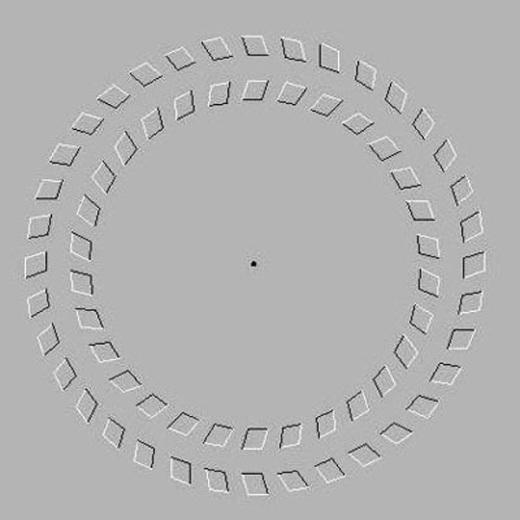 Khi tập trung nhìn vào chấm đen, bạn sẽ thấy các vòng tròn chuyển động.