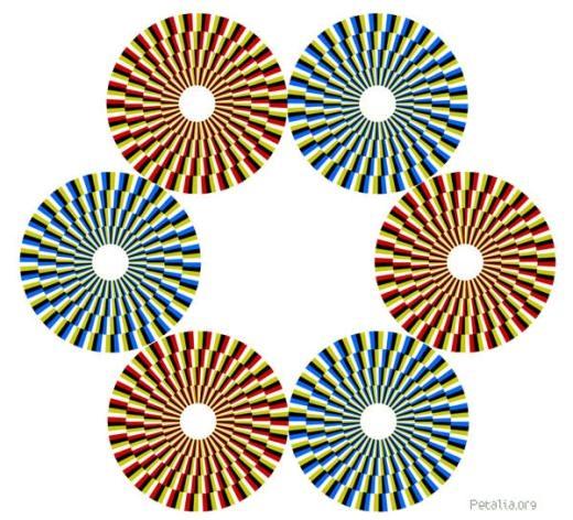 Những hình tròn này đang đứng yên chứ không phải đang xoay tròn đâu nhé!