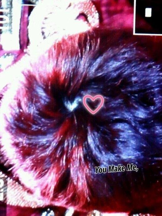Một trong những bức ảnh hiếm hoi ghi lại được hình ảnh đỉnh đầu của Sunggyu (Infinite) và phát hiện anh chàng sở hữu xoáy hình trái tim cực hiếm thấy.