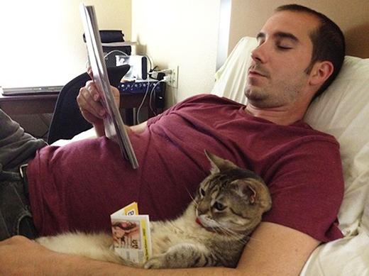 Nhìn đọc sách say sưa như thế mà không biết chú mèo có hiểu gì không nhỉ?