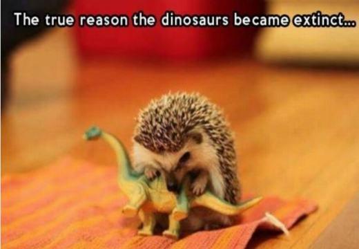 Lí do khủng long tuyệt chủng là đây sao?