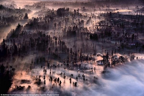 Một màn sương mỏng bao trùm quanh thôn xóm Cemoro Lawang, Indonesia vào khoảnh khắc mặt trời mọc.