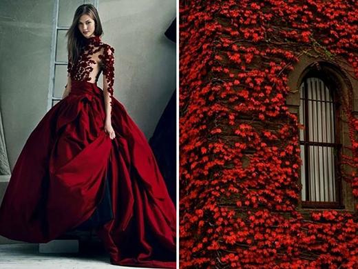 Màu đỏ rượu chát của những dây thường xuân trong thiết kế váy dạ hội cao cấp kết hợp giữa lụa và chất liệu xuyên thấu gợi cảm.