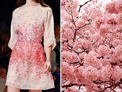 Những cánh hoa đào mỏng manh của đất nước Nhật Bản với gam màu hồng phấn đặc trưng.