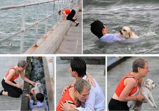 Một người qua đường đã dũng cảm lao xuống dòng nước xoáy để cứu chú chó đáng thương này. Mạng sống nào cũng đáng quý!