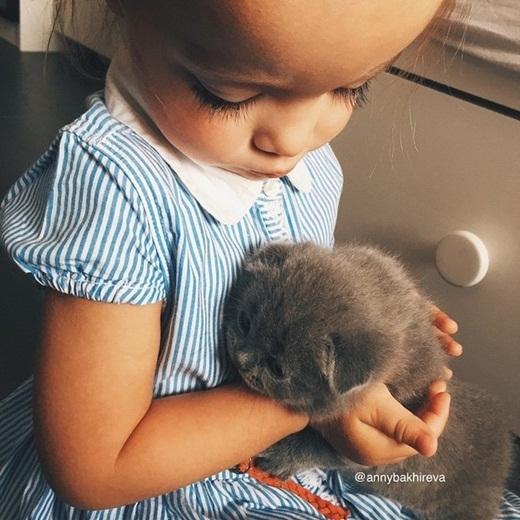 Bạn mèo nhí của cô bé