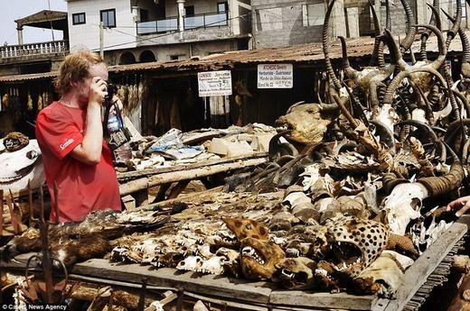 Hiện khu chợ đã được quản lý chặt chẽ hơn do một số người lợi dụng để buôn bán các động vật quý hiếm.