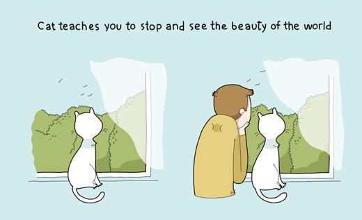 """Ngoài ra, chú mèo còn dạy bạn biết cách """"bỏ mặc deadline' và 'thả hồn' về thiên nhiên nữa đấy!"""