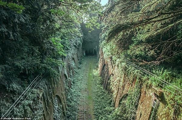 """Chemin de fer de Petite Ceinture là tên gọi của một tuyến đường sắt trọng điểm ở Paris từ năm 1852. Nhưng đến năm 1934, tuyến đường sắt này bị bỏ hoang và từ đó vô tình trở thành """"thánh địa"""" của những nghệ sĩ graffiti đường phố và cả những người yêu thiên nhiên."""