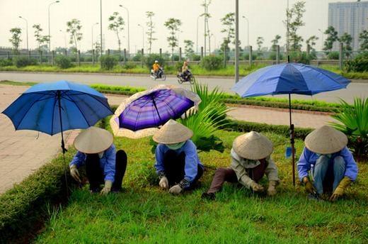 Chống nắng phong cách nhân viên cắt cỏ