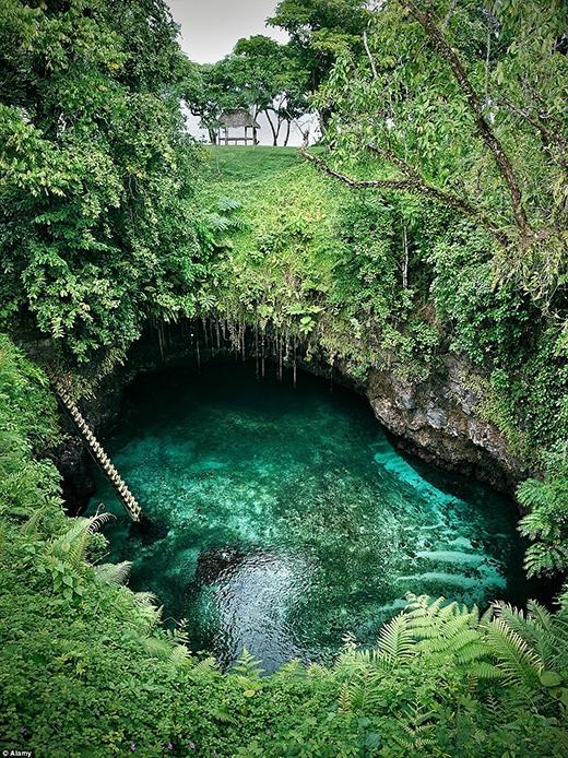 Nước hồ To Sua xanh trong vắt một cách tự nhiên, hòa quyện với màu xanh của cỏ cây hoa lá, tạo nên một không gian vô cùng yên bình và tươi mát. Bơi lội ở hồ To Sua là một trải nghiệm tuyệt vời. Nếu bạn là một tay bơi cừ khôi, bạn có thể bơi dưới hầm đá và ra đến biển. Ở nơi đó, bạn sẽ bắt gặp vô số các loài cá nhiệt đới cùng bãi biển đầy cát lấp lánh dưới nắng vàng.