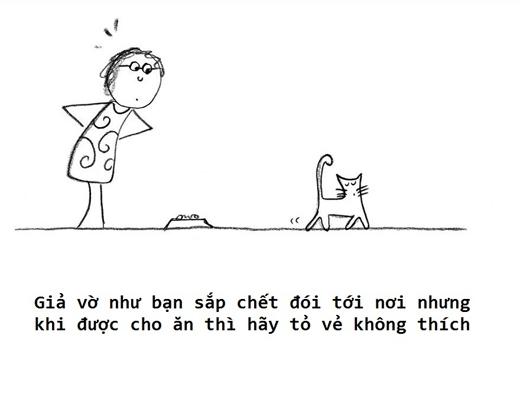 """Bởi vì là mèo chứ không phải heo cho nên ăn ít thôi, không lại bị """"mất dáng""""."""