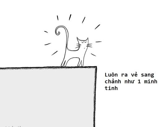 """""""Không ai có thể sang chảnh bằng loài mèo chúng ta""""."""