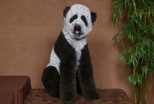 Diễn viên đóng thế trong phim Kungfu Panda.
