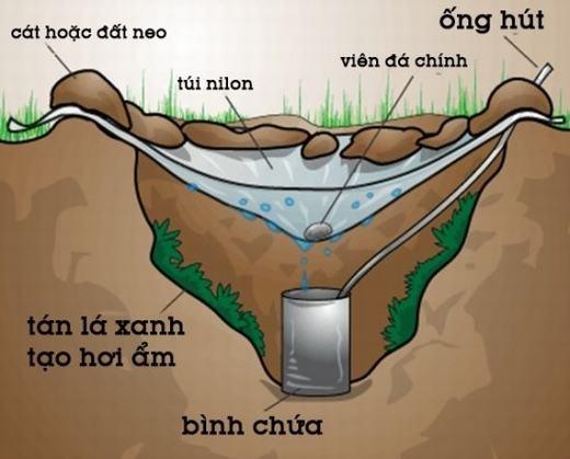 Trong trường hợp không có nước uống, bạn có thể làm bằng cách sau: Bạn cho một chiếc li hoặc bình chứa vào hố, đặt một chiếc ống hút, bên trên hố phủ một lớp nilon và lấy đất đá chèn lại, cho một viên đá nhỏ vào giữa lớp nilon. Sau một thời gian nhất định, bạn đã có thể hứng được một số nước.