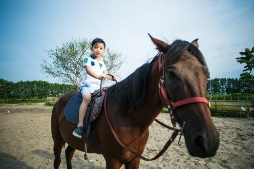 Trải nghiệm lần đầu được cưỡi ngựa thật của Subeo. - Tin sao Viet - Tin tuc sao Viet - Scandal sao Viet - Tin tuc cua Sao - Tin cua Sao