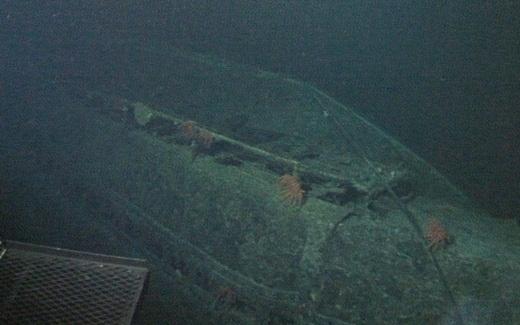 Vào năm 1968, bốn chiếc tàu ngầm của Nga, Israel, Pháp và Mỹ đã bị mất tích không rõ nguyên nhân. Một vài người nghĩ là những chiếc tàu ngầm có thể đã gặp phải ngư lôi, trong khi một số người lại tin rằng có một loài thủy quái dưới đại dương đã khiến bốn chiếc tàu này một đi không trở lại.