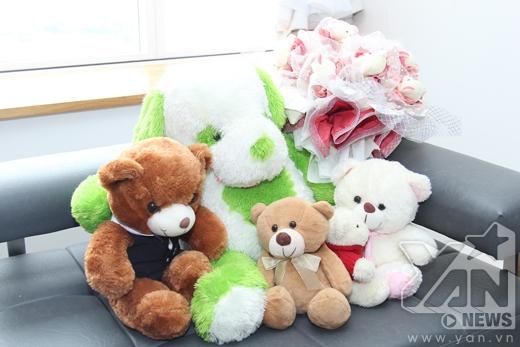 Những chú gấu bông đáng yêu do các fan tặng. - Tin sao Viet - Tin tuc sao Viet - Scandal sao Viet - Tin tuc cua Sao - Tin cua Sao