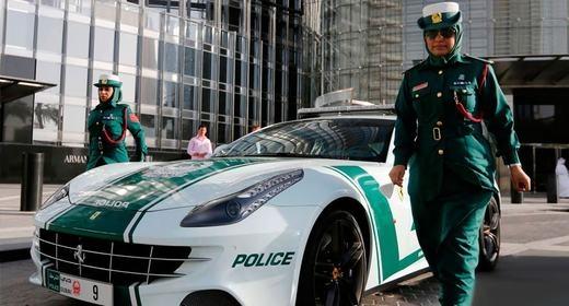Cảnh sát cũng đượctrang bị siêu xe để làm nhiệm vụ.