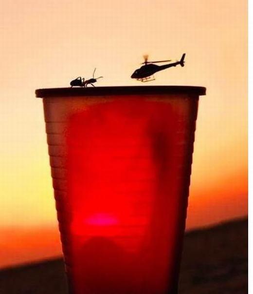 Hình như máy bay trực thăng cũng chỉ nhỏ bằng con kiến. Hay đây là con kiến khổng lồ?