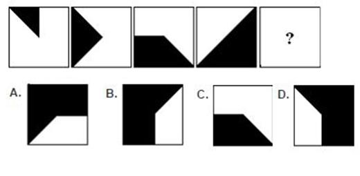 Câu 13: Hình nào phù hợp nhất?