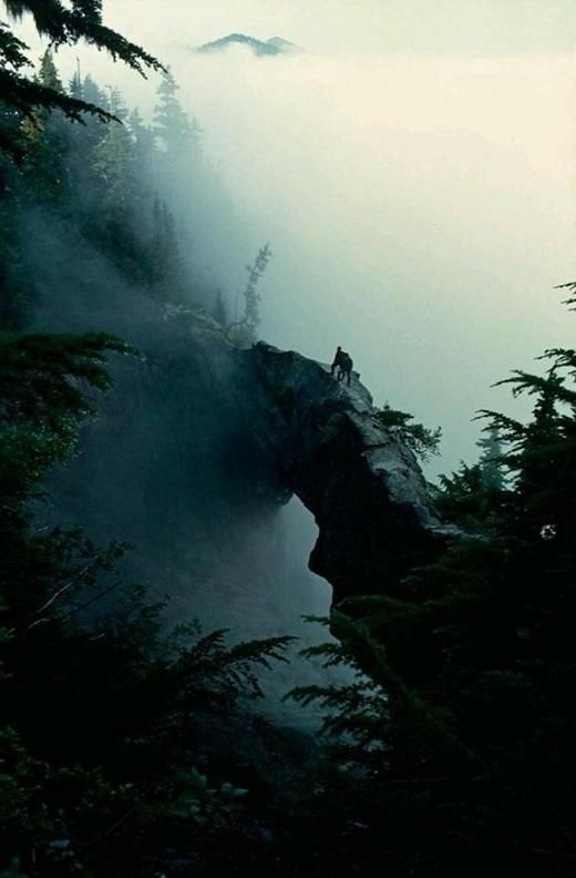 Khi đặt chân đến nơi đây, chắc chắn bạn sẽ bị chinh phục bởi cảnh quan tuyệt đẹp, một cảnh đẹp huyền ảo trong những làn sương hay ngọn núi cao sừng sững, con thác hiền hòa thơ mộng, cùng với các đường mòn bên cánh đồng hoa đầy màu sắc... tất cả dường như đang tạo nên một nét đẹp huyền bí đầy màu sắc.