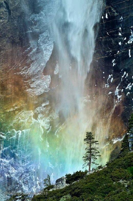 Được chọn là di sản thế giới năm 1984, Yosemite nổi tiếng khắp thế giới về các vách đá granite đẹp đẽ, thác nước cao, dòng nước trong, cây củ tùng vĩ đại và đa dạng sinh học.