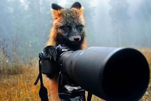 """""""Tránh xa khỏi ống kính của tôi mau!""""."""
