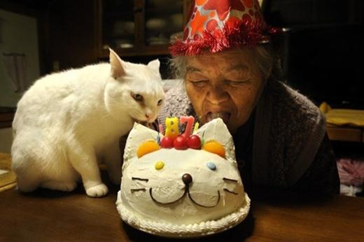 Hai năm liền, bà đón sinh nhật ấm áp cùng chú mèo thân thiết.