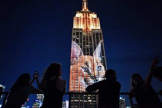 Người dân New York thích thú ngắm nhìn tòa tháp 'thay áo'.