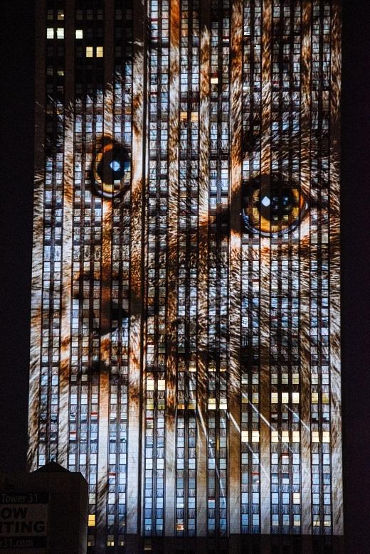 Tòa nhà Empire State cao 381m với 102 tầng.