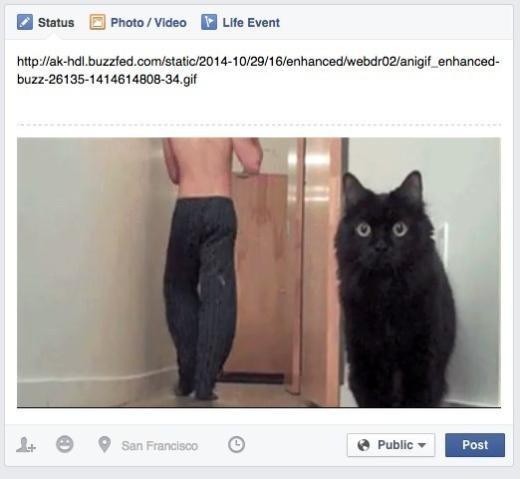 Bạn có thể đăng ảnh động (đuôi *.gif) lên Facebook và cả bình luận nữa đấy. Hãy sao chép URL của ảnh đó và dán vào thanh trạng thái hoặc bình luận, đơn giản vô cùng. Đáng tiếc là Facebook chưa cho phép tự tải ảnh động từ máy tính lên.