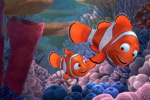 Đáy đại dương lung linh sắc màu – ngôi nhà của chú cá nhỏ Nemo, liệu có thật hay không?