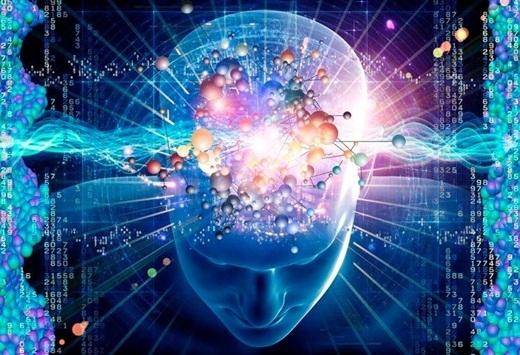 Ý thức của con người có thể tồn tại từ 15 đến 20 giây sau khi bị chặt đầu.