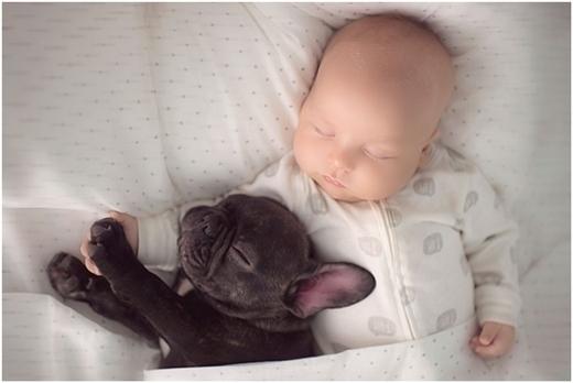"""Hai """"đứa trẻ"""" ngủ cùng nhau..."""