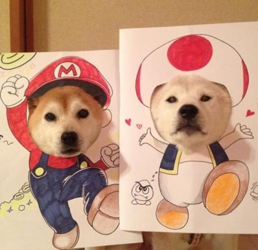 Mario chuẩn bị săn nấm để hóa thành khổng lồ đây!