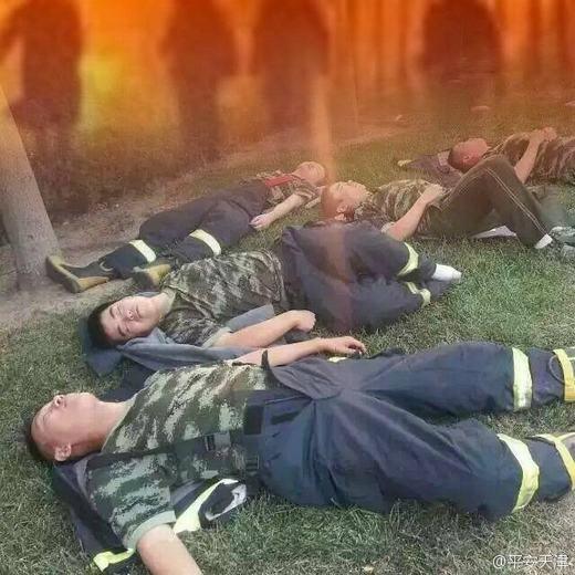"""Sau nhiều giờ làm việc, họlả đi vì mệt. Các bãi cỏ là nơi được họ """"trưng dụng"""" làm giường nằm."""