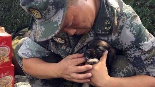 Như biết ơn những người cứu mạng mình, chú chó luôn quấn quýt bên lực lượng cứu hộ. Việc chú chó còn sống đã khiến nhiều người xúc động, thậm chí còn có niềm tin rằng những người đang mất tích trong đó sẽ được giải cứu trong tình trạng còn sống.