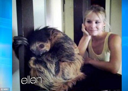Kristen Bell đã từng đưa ra hàng ngàn lí do cho tình yêu kì lạ đối với những chú lười. Một trong những lí do đó là bởi vì chúng vô cùng đáng yêu, 'đặc biệt là khi chúng chảy một ít nước dãi', cô chia sẻ. 'Nàng công chúa Anna' cũng thích cách loài vật này tương tác với thế giới bên ngoài. Khi được chồng tặng một con lười vào ngày sinh nhật, Bell đã bật khóc nức nở vì sung sướng.