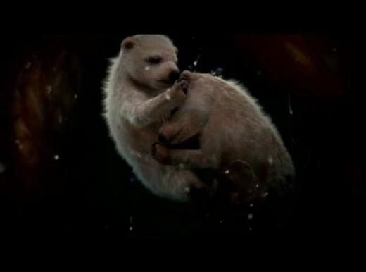 """""""Tan chảy"""" trước quá trình chào đời siêu dễ thương của động vật"""