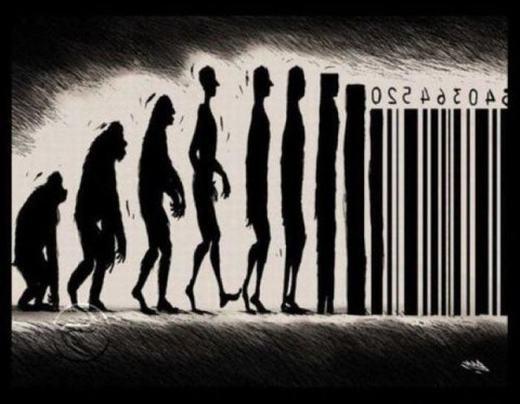 Quy luật tiến hóa mới?