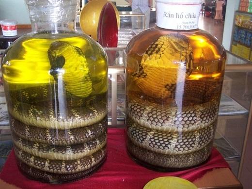 Việt Namvới những chai rượu rắn khổng lồ.