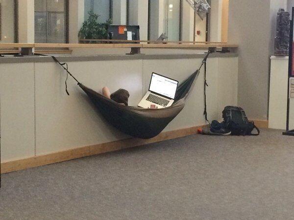 Nếu bạn băn khoăn về chỗ ngủ trưa trên trường, hãy làm theo anh chàng này, lại được tranh thủ wifi của nhà trường nữa.
