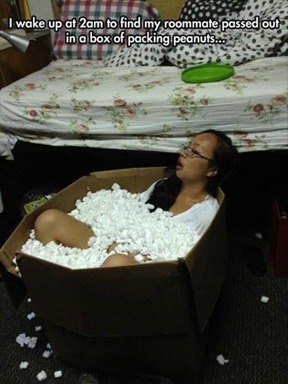 Ngủ trong thùng giấy đựng xốp: bạn có muốn thử?