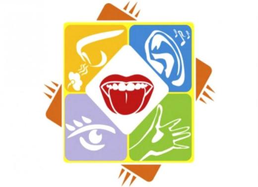 Theo các nhà thần kinh học hiện đại, chúng ta có ít nhất tới 9 giác quan. Tuy nhiên, hiện tại các đứa trẻ thường được dạy rằng con người có 5 giác quan (thính giác, thị giác, khứu giác, vị giác và xúc giác) mà thôi.